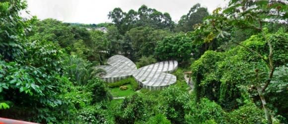 Jardin-Botanico-Del-Quindio
